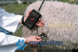 DRAMINSKI Ultrasonic tester for ovine and caprine animals (DRM)