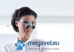 Magnifying glasses and microscopes ZEISS operating (CAZ)