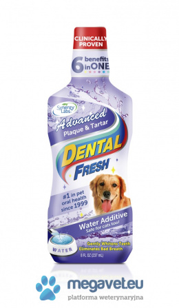 Dental Fresh Stone & Precipitate 237 ml/503/1 L [RVT]
