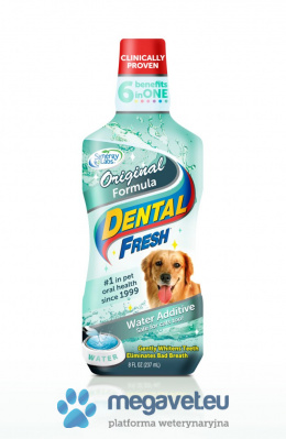 Dental Fresh standard 237ml/503/1L 3,8 L [RVT]