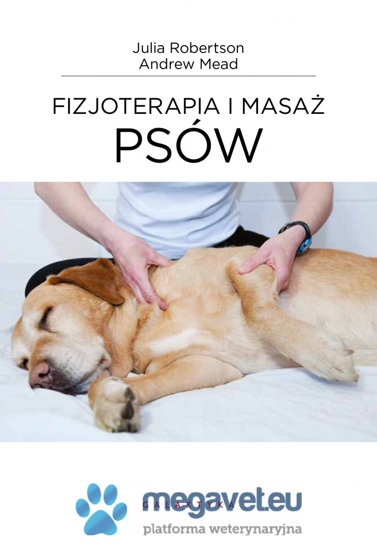 Physiotherapy and dog massage [GTK]