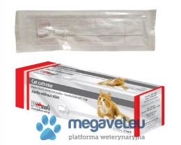 Cat catheter [PNT]