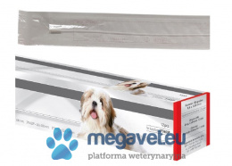 Dog catheter [PNT]