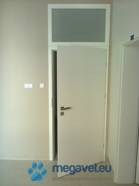 On-site door security [ASR]